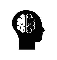 contour silhouette head with brain inside vector image