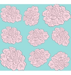 Flower pink peony seamless pattern vector