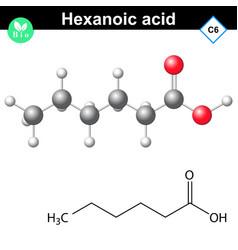 Hexanoic acid molecule vector