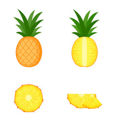 Pineapple whole fruit half and slices vector
