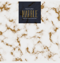 Premium marble texture with golden pattern vector