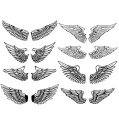 Set of vintage wings isolated on white background vector