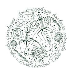 virus hand-drawn image vector image