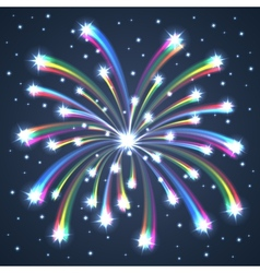 firework colorful one vector image vector image
