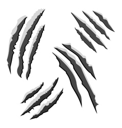 Set of black claw scratches isolated on white vector