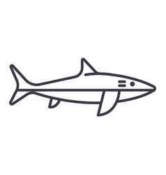 shark line icon sign on vector image