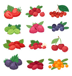 Berry berrying mix strawberry blueberry vector