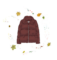 Down jacket burgundy color outerwear on the vector