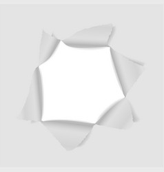 hole in paper template for creative design vector image