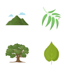 mountain cloud tree branch leafforest set vector image