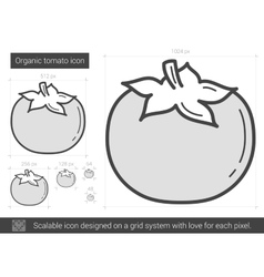 Organic tomato line icon vector image