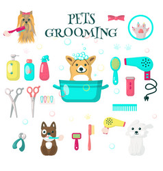 Pets grooming set flat isolated vector