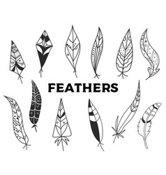 set hand drawn feathers isolated on white vector image