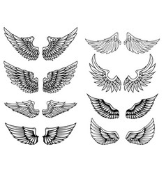 Set of vintage wings design elements for logo vector