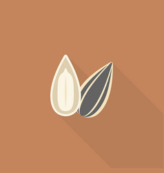 sunflower seeds icon vector image