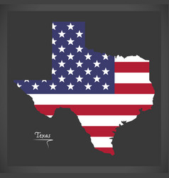 texas map with american national flag vector image
