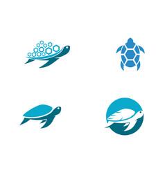 turtle animal cartoon icon vector image