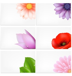 Floral Greeting Cards Background vector image vector image