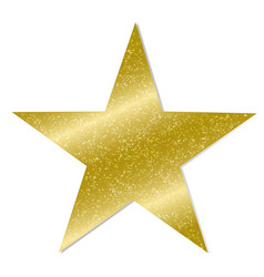 star on white background vector image