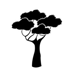 black aafrican tree silhouette natural forest vector image
