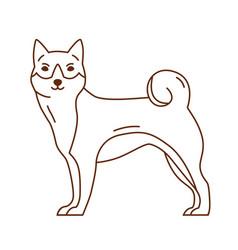 abstract akita or shiba inu cute purebred dog or vector image