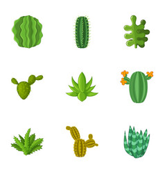 Desert plant icons set cartoon style vector