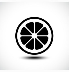 Lemon orange lime grapefruit slice vector