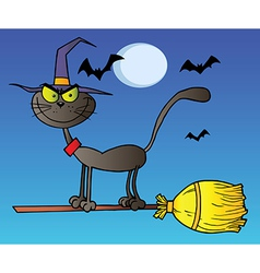 Black Cat Which Fly A Broom In Night vector image