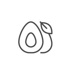 Avocado line outline icon fruit concept vector