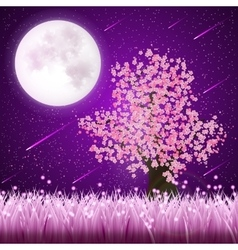 Cherry Blossom tree vector image
