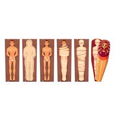 egyptian mummy mummification process vector image
