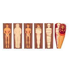 Egyptian mummy mummification process vector