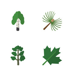 Flat icon nature set of forest timber rosemary vector