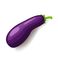 Fresh violet eggplant icon isolated healthy vector