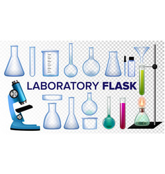 laboratory flask set chemical glass vector image