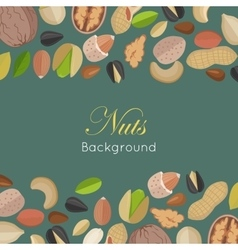 Nuts Background Concept in Flat Design vector image