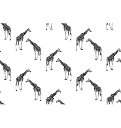 Seamless pattern with giraffes vector
