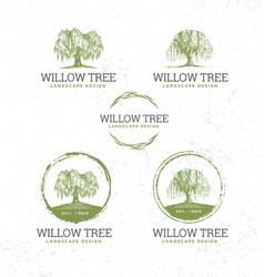 Willow tree landscape design creative vector