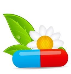 Herbal pill iconEnvironment background vector image vector image