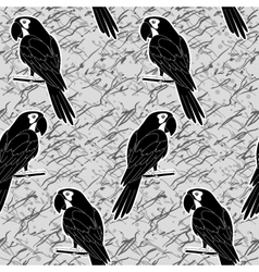 Seamless pattern black and white parrots vector image vector image