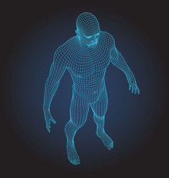 3d wire frame human body full face vector