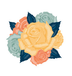 Bouquet roses isolated vector