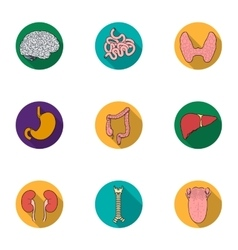 Human organs set icons in flat style Big vector image