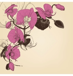Orchid corner decoration greeting card vector image