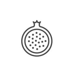 Pomegranate line outline icon fruit concept vector