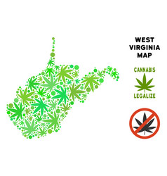Royalty free cannabis leaves composition west vector