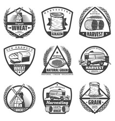 Vintage monochrome harvesting labels set vector