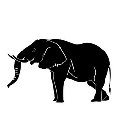 isolated elephant silhouette vector image vector image