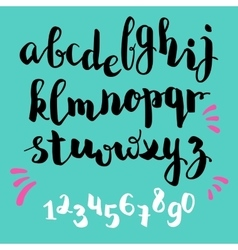brushpen style alphabet calligraphy vector image