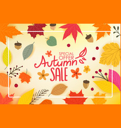 color autumn leaves with white frame autumn sale vector image